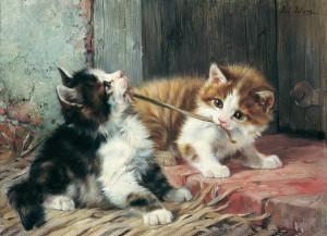 Spielende Katzen Image