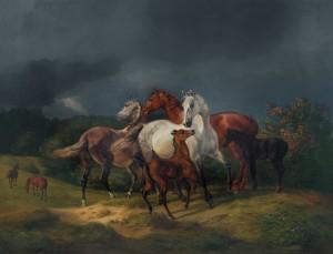 Pferde auf der Weide bei Gewitter Image