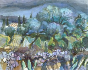 Olivengarten auf Korcula, Kroatien ⋅ 1989 Image
