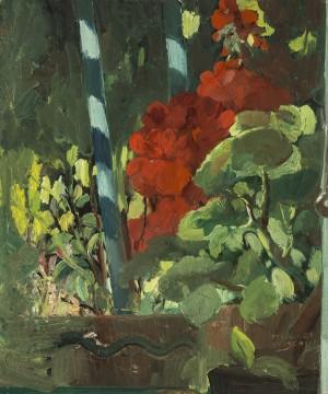 Geranien auf dem Balkon ⋅ um 1920 Image
