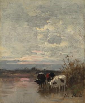 Kühe im Uferwasser Image