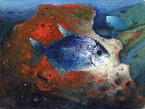 Fisch ⋅ um 1965 Image