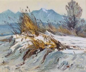 Winter am Chiemsee ⋅ um 1960 Image