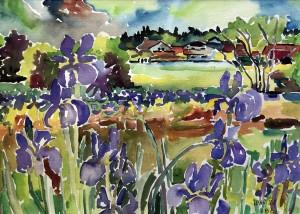 Iriswiese mit Häusern ⋅ 1988 Image