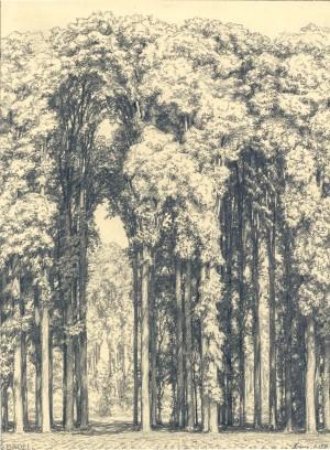 Deutscher Wald ⋅ 1916 Image
