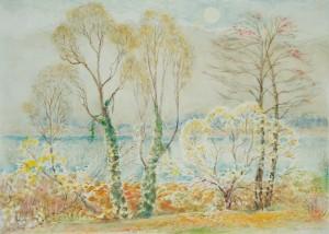 Garten in Urfahrn im Herbst ⋅ nach 1950 Image