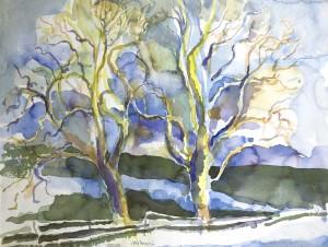 Eichen im Vorfrühling, Am Weiherbach, Greilinger Flur ⋅ 1995 Image