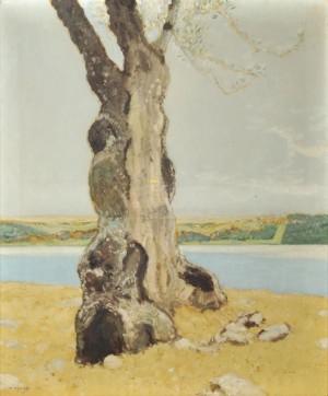 Nemisee ⋅ 1913 Image