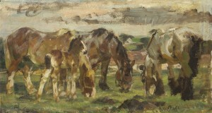 Pferde auf der Weide ⋅ um 1950 Image