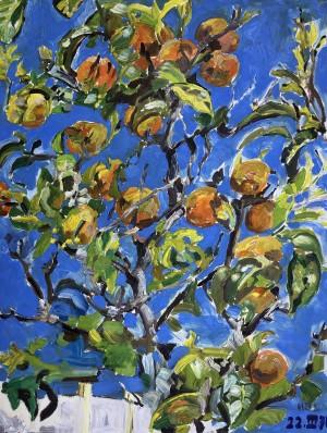 Orangenbaum ⋅ 1970 Image