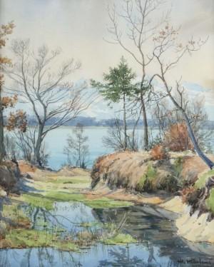 Uferlandschaft am Chiemsee Image