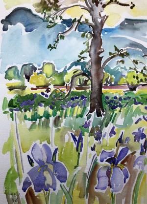 Iriswiese vor den Bergen ⋅ 1988 Image