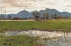 Im Harrasser Moor ⋅ 1996 Image