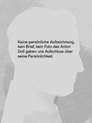 Anton Doll Image