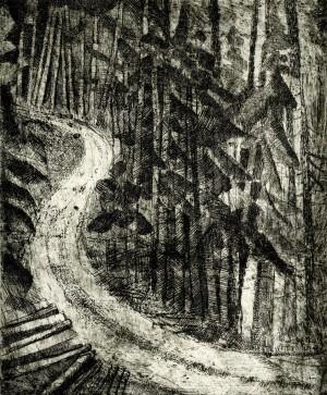 Waldweg ⋅ 1984 Image