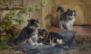 Drei Kätzchen im Garten Image