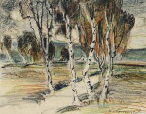 Birken im Moor Image
