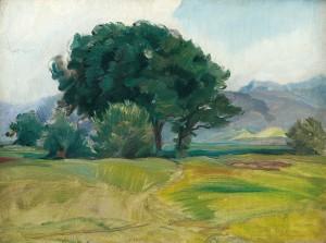 Baumgruppe im Harrasser Moor ⋅ 1919 Image