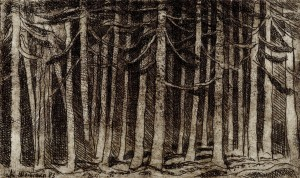 Waldstück ⋅ 1983 Image