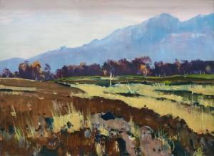 Im Grassauer Moor Image
