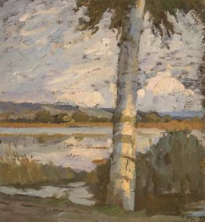 Birke am Seeufer Image