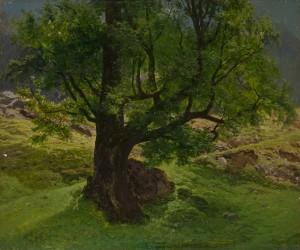 Alte Eiche ⋅ um 1842 Image