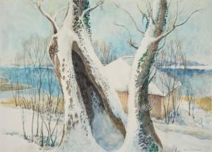 Urfahrn - Alte Weide mit Bootshütte ⋅ nach 1950 Image