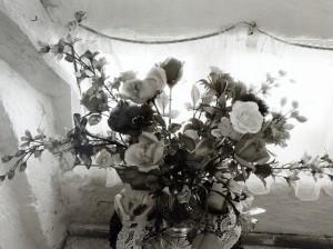 Blumenstrauß am Fenster (Breitbrunn) ⋅ 1981 Image