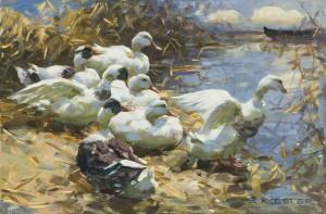 Sieben Enten am Ufer ⋅ um 1910 Image