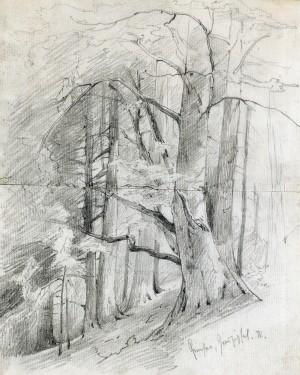 Am Ganszipfel ⋅ 1892 Image