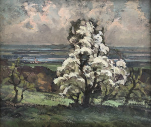 Blühender Baum auf der Ratzinger Höhe Image