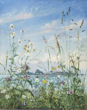 Feldblumen am Chiemseeufer ⋅ um 1935 Image
