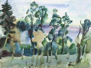 Landschaft am Chiemsee ⋅ 1966 Image