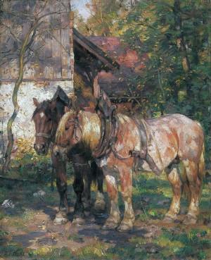 Zwei Pferde, ausgespannt ⋅ um 1955 Image